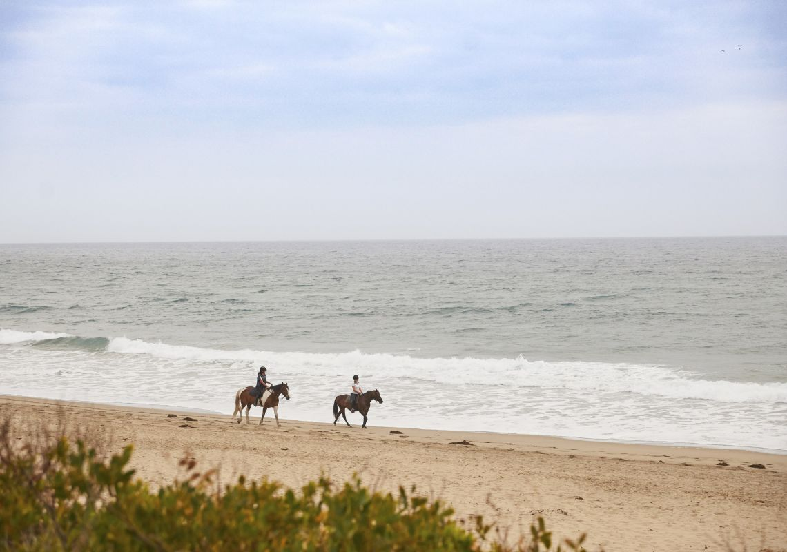 Bangalay Villa guests enjoying a beach horse ride on Seven Mile Beach - Shoalhaven Heads