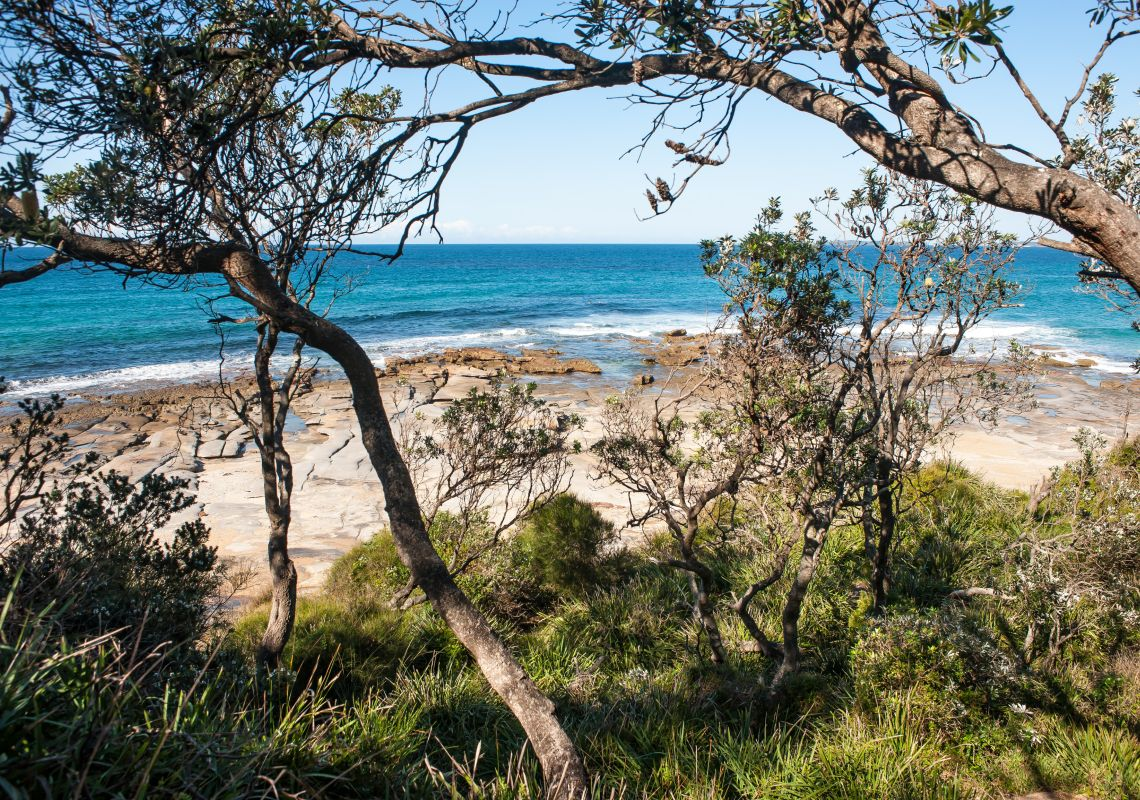 Sunburnt Beach Camping Area, Walk in camping only at Meroo National Park in Bawley Point, Jervis Bay and Shoalhaven