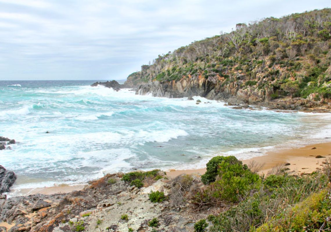Picnic Point Campground - NSW National Parks