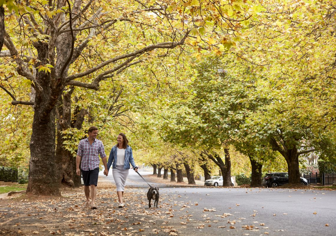 Couple enjoying a walk through tree-lined Sampson Street in Orange, Country NSW