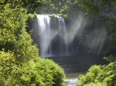 Scenic shot of Dangar Falls, near Dorrigo, North Coast