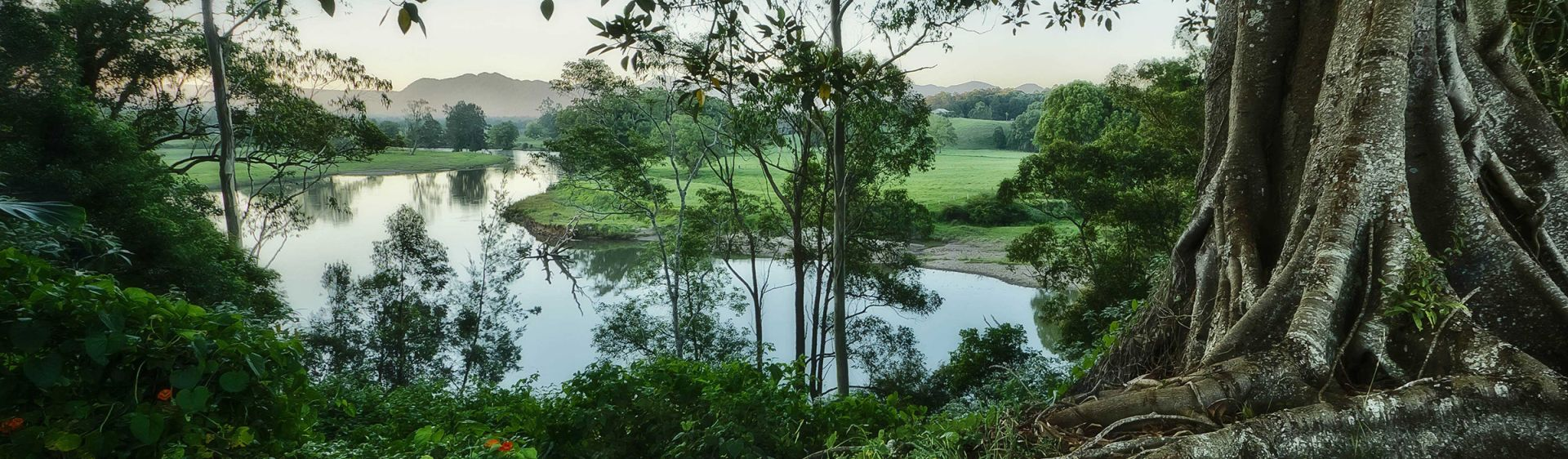 The Bellinger River meanders past farms and bush in Bellingen, NSW, Australia