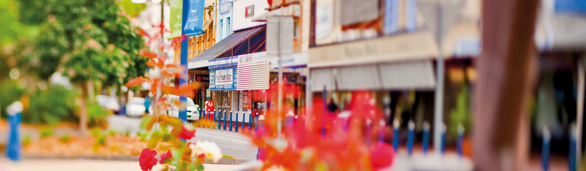 Flowers bloom on a pretty shopping street in Lismore, NSW