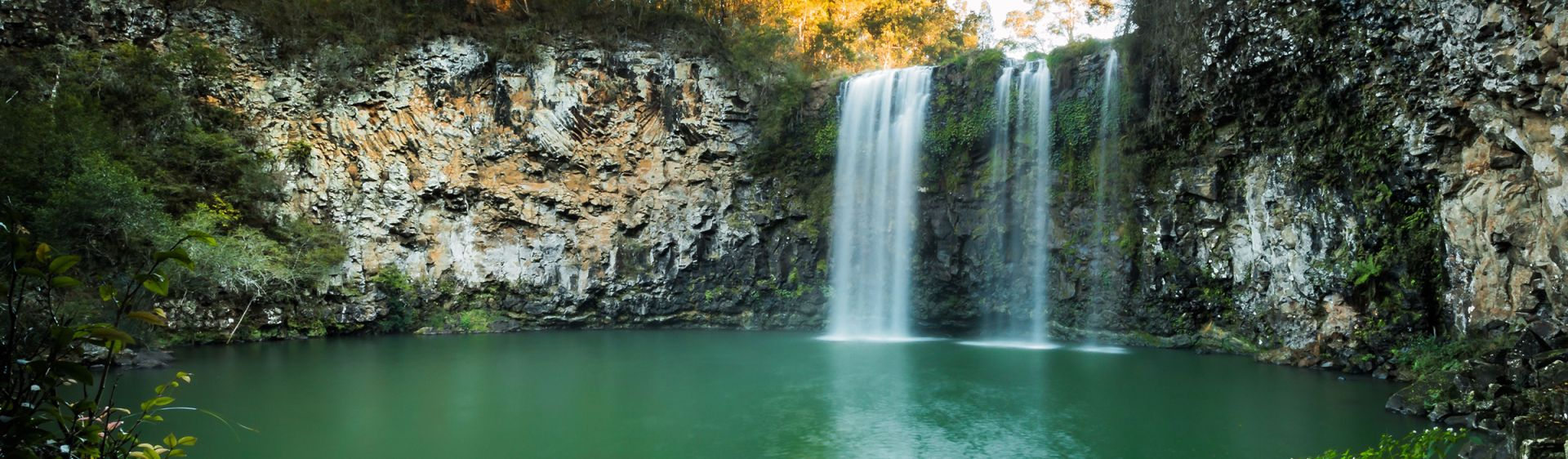 Dangar Falls cascading over 30 metre drop, just north of Dorrigo township.