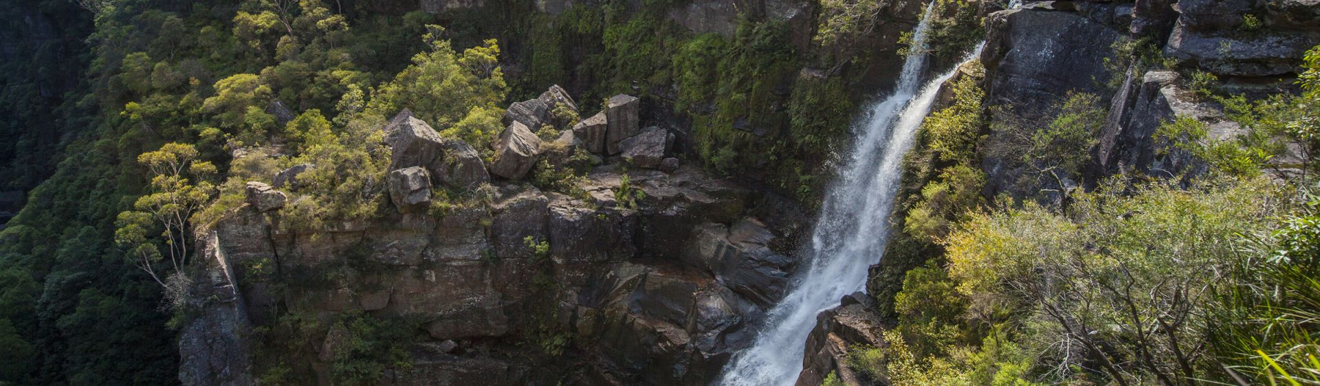 Minnamurra Rainforest waterfalls - Kiama