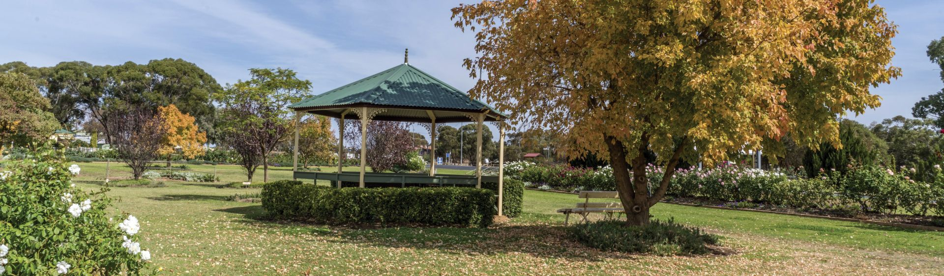 A Garden Club 2000 Rose Garden picnic shelter, West Wyalong