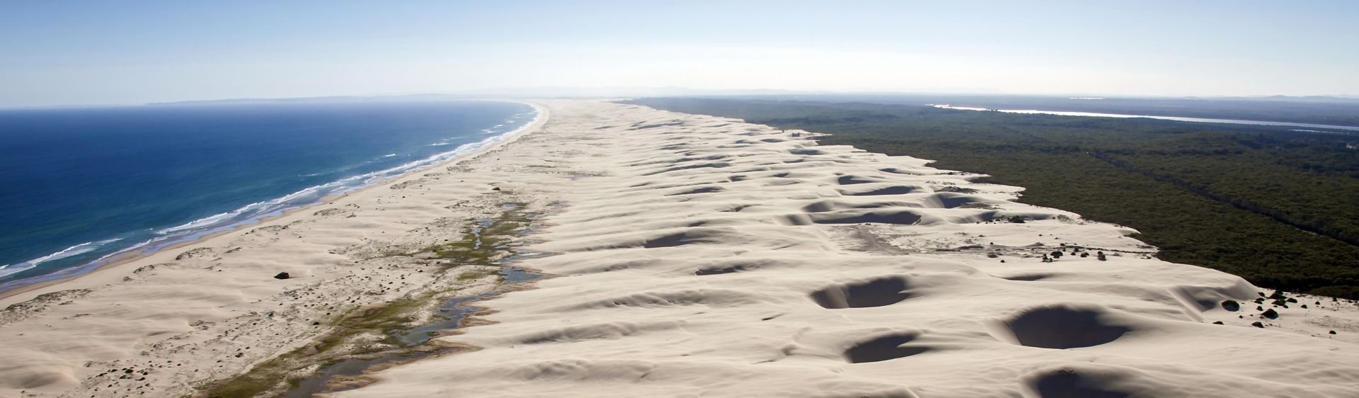 The towering Stockton Bight sand dunes in Worimi Conservation Lands, Port Stephens
