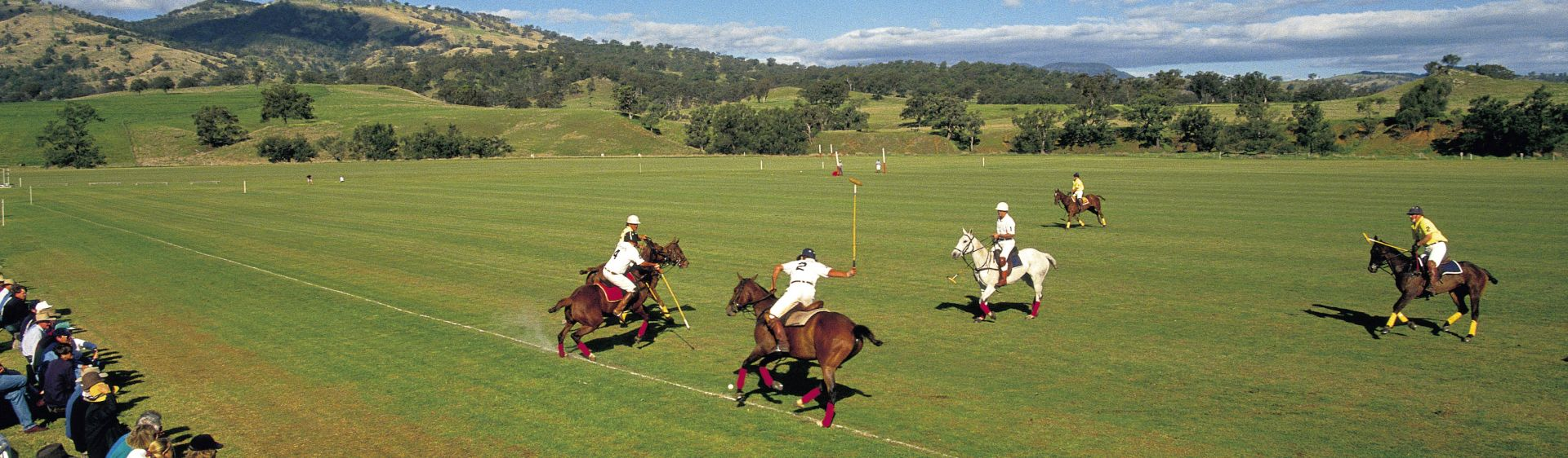 Polo match in the beautiful town of Scone