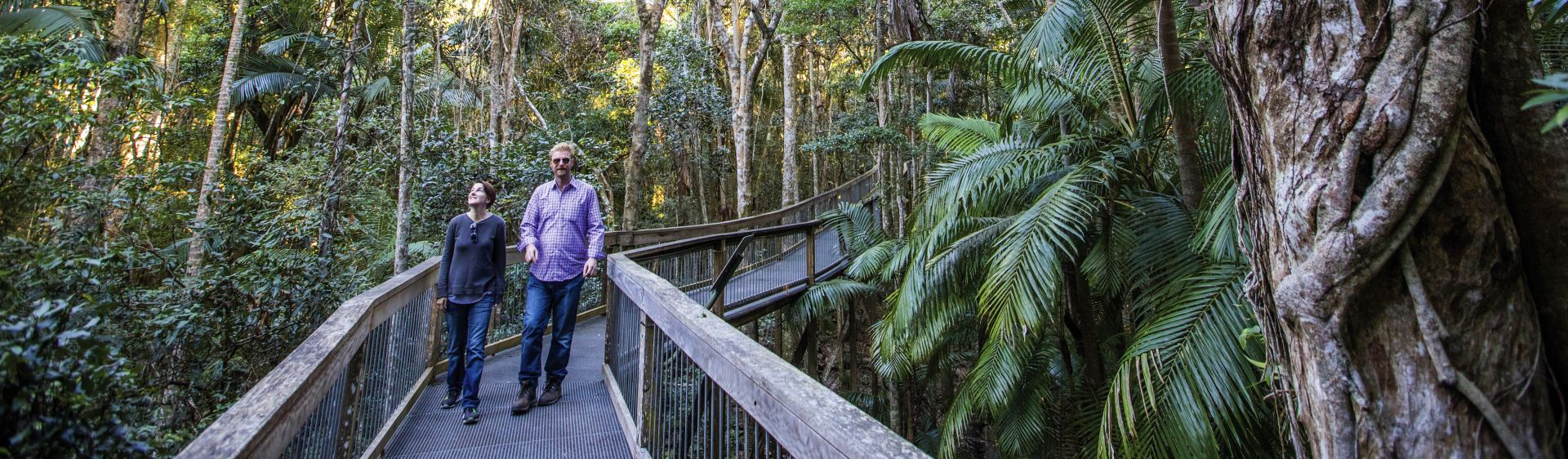 A couple stroll along the Sea Acres Rainforest boardwalk in Port Macquarie, NSW, Australia