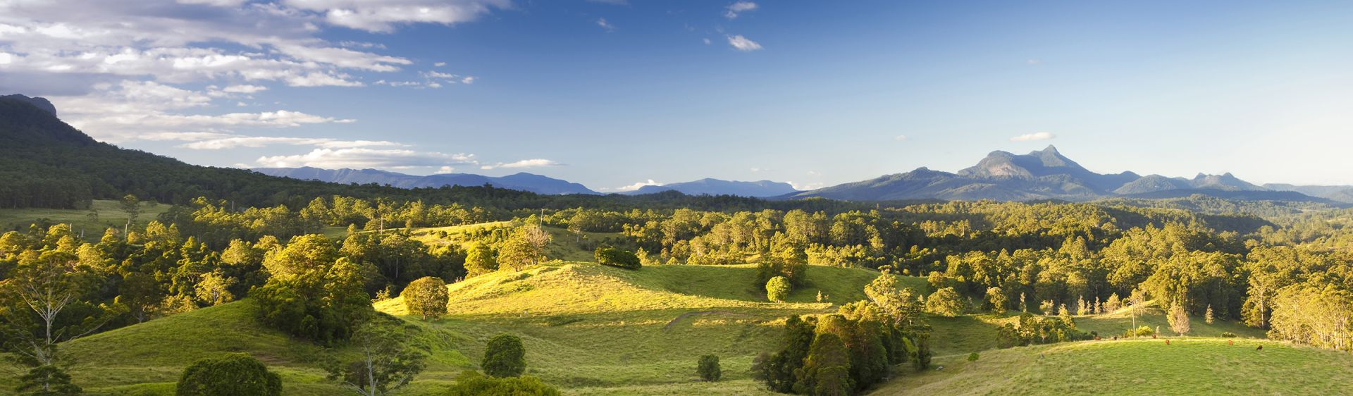 Murwillumbah hinterland with Mount Warning in the distance, The Tweed region