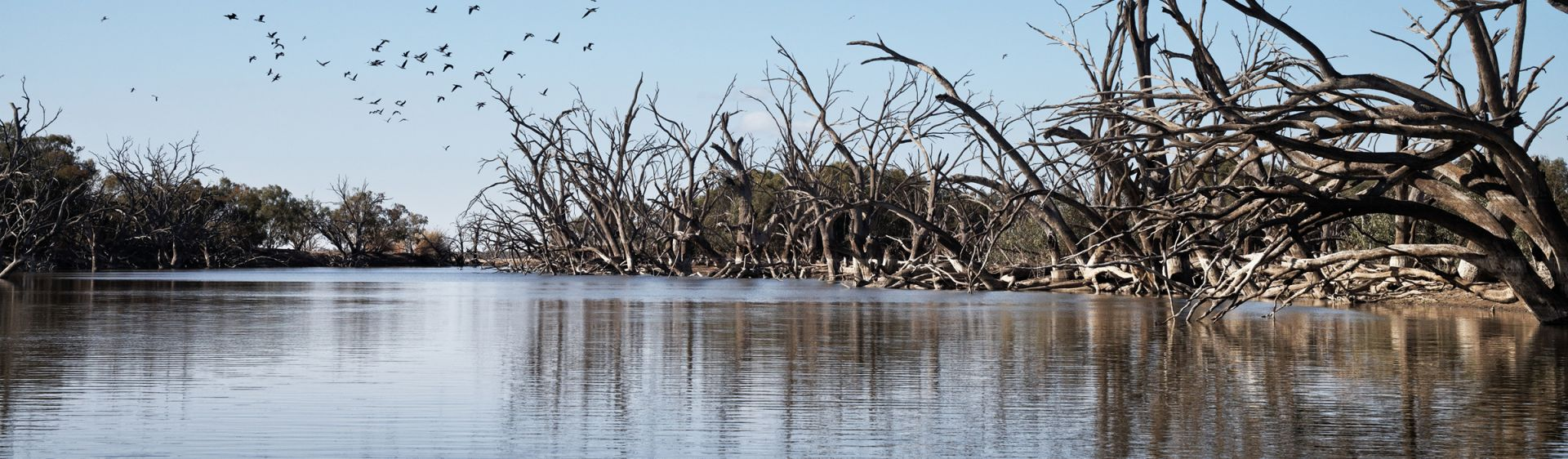 Menindee Lakes Plan A Holiday Accommodation Maps