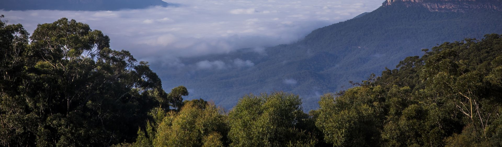 Scenic views across Jamison Valley in the Blue Mountains National Park, Leura
