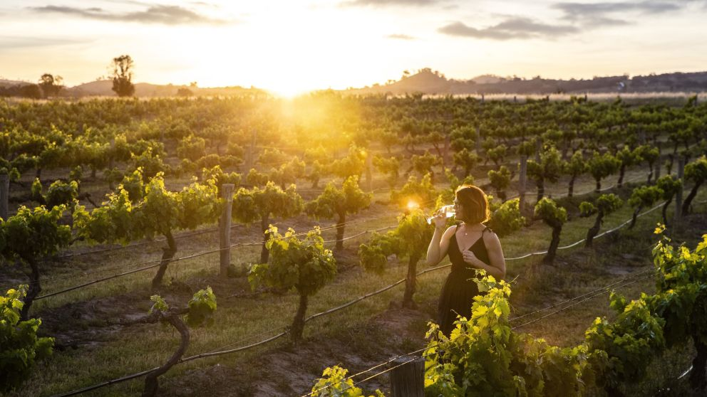Woman enjoying a glass of wine and the sun set from the scenic grounds of Burnbrae Wines in Mudgee, Country NSW