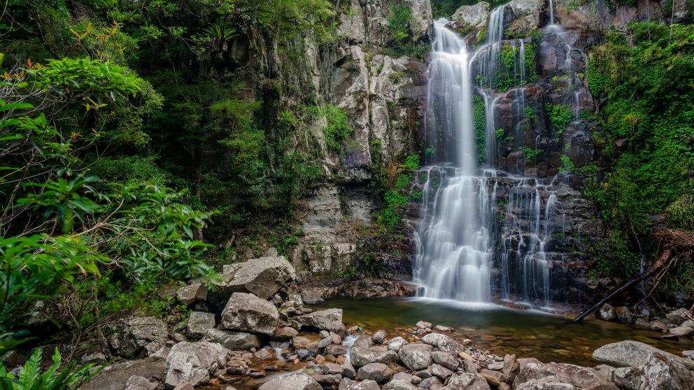 Lower Minnamurra Falls plunges into a creek in Budderoo National Park in Jamberoo, Kiama Area, South Coast