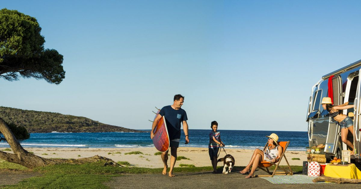 Pet-Friendly Holiday Parks NSW - Holidays With Dogs, Camping