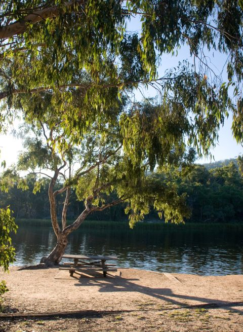 Dunns Swamp camping ground - Wollemi National Park - Mudgee
