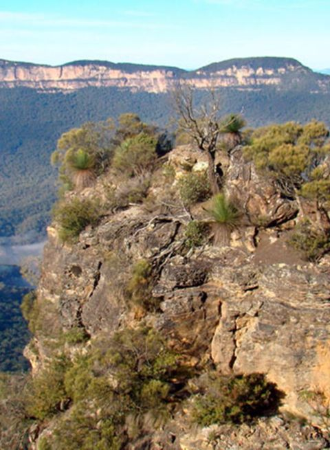 Mount Solitary Walking Track - Blue Mountains