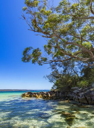 Greenpatch - Jervis Bay