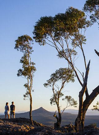 looking out over Pigeon House Mountain - Moreton National Park
