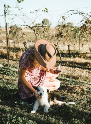 Woman patting the resident wine dog at Blueberry Hill Wines, Rothbury