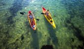 Port Stephens Paddlesports Kayak and Paddle Board Hire