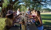 Friends cheers in the afternoon sun at Tinklers WIne - Hunter Valley