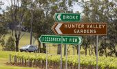 Car passing a local vineyard in the Hunter Valley