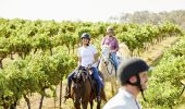 Murchessons Horseback Wine and Dine Tours, Pokolbin, Hunter Valley