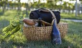 Enjoy a picnic in the vines at Rowlee Wines - Orange, Country NSW