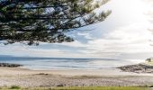 Scenic coastal views from Horseshoe Bay Beach in South West Rocks, Macleay Valley Coast