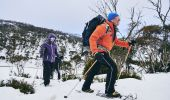 Group passing through Dead Horse Gap, Thredbo in the Snowy Mountains on a snowshoe adventure