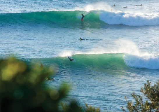 Surfing at Angourie - Yamba - Clarence Valley