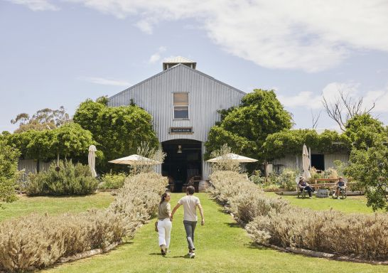 Lowe Wines in Mudgee