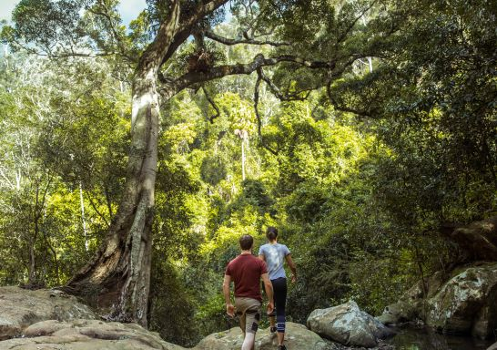 Couple enjoying a hike to Cascade Falls in Macquarie National Park